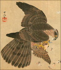 Japanese Print Reproduction: Hawk and Prey - Fine Art Print