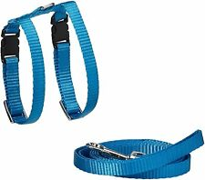 Marshall Ferret Harness and Lead