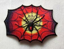 Un écusson araignée dans le réseau oiseau araignée Arachnida weber wagenknecht patch spider cobweb