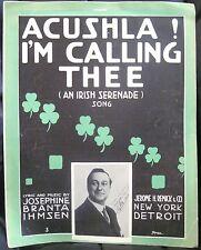 Irish Sheet Music ACUSHLA ! I'M CALLING THEE Serenade Song Ihmsen Starmer 1914