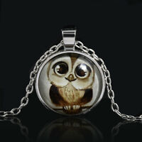 Fashion Owl Photo Cabochon Glass Silver Chain Charm Pendant Necklace Jewelry