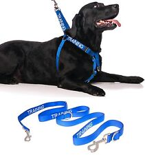 Front Clip Harness Dog Nylon Training Blue Color Coded +Hands Free Coupler Leash