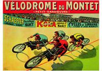 VINTAGE BICYCLE POSTER Veldrome Du Mont - Auzolle Bike Cycle Art Print 39.5x27.5