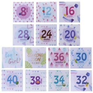 Pregnant Womens Belly Month Weeks Sticker Adhesive Photography Landmark 14Pc Kit