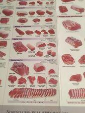 Guia De Cortes Comerciales De La Carne De Res Canadiense Poster