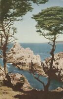 Point Lobos, CA - Point Lobos State Park - Pinnacle Point - Shoreline View -1952