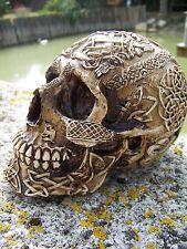 347064    FIGURINE  CRANE TETE DE MORT  RELIEF  GOTHIQUE HEROIC FANTASY