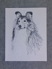 Sheltie Pen and Ink Stationary Cards, Note Cards, Greeting Cards. 10 pack.