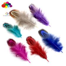 100 pcs 4-7 cm Multi-colour Party Decorative DIY Craft Pheasant Natural Feathers