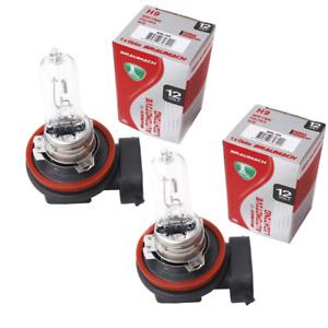 Headlight Bulbs Globes H9 x 2 for Mitsubishi Pajero NS NT NW SUV 3.2 DI-D All-wh