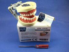 Typodont Dental Universal Plate TDRM-200 Type Kilgore Nissin ARTMED