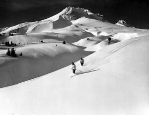 """Skiing on Mount Hood, Oregon Old Photo 8.5"""" x 11"""" Reprint"""