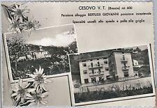 CARTOLINA d'Epoca - BRESCIA  - Cesovo  1962 - Marcheno