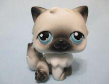 Littlest Pet Shop Cat Persian 60 Authentic Lps