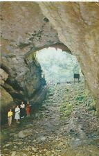 America Postcard - Historic Entrance to Mammoth Cave - Kentucky  AB84