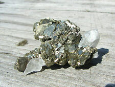 Bright Marcasite Crystals With A White Tipped Quartz Crystal Nikolaivskiy Mine