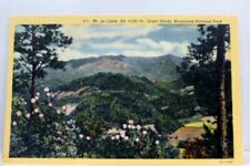 Great Smoky Mountains National Park Mt Le Conte Postcard Old Vintage Card View