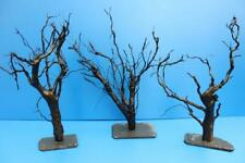 XL 25-30cm Moorkien Garnelenbaum auf Schiefer Wurzel Moorkienholz Aquariumwurzel