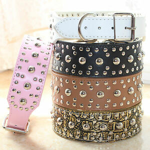 """2"""" wide Leather Spiked Studded Dog Collar for Big Dog Collar Pitbull Terrier M L"""