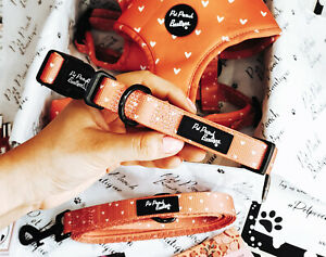 Apricot Hearts Dog Collar - Puppy or Dog NEW