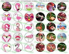 "30 Precut 1"" Flamingos Bottle cap Image Set 1"