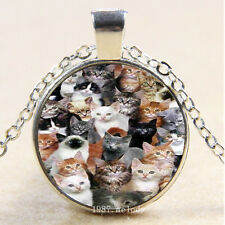 Photo Cabochon Glass Silver Charm Pendant Necklace lots of cats