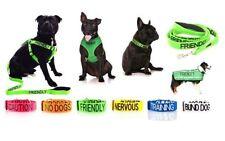 Colliers noirs en nylon pour chien