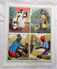Vintage Schools Poster - African Women -  c 1920s / 1930s