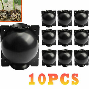 10Pcs Plant Rooting Device High Pressure Propagation Ball Root Grow Grafting Box