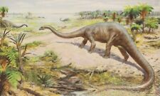 """Co Wy Prehistoric Us Dinosaurs Diplodocus Vf Color Print By Z Burian 1958 9x13"""""""