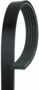 Serpentine Belt-Standard ACDelco Pro 5K380