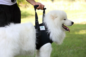 Dog Front Carrier Harness/Helping Harness for Elderly Dogs Rehabilitation Aid