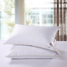 Goose Down Feather Pillows Luxury Gold Piped Hotel Quality Soft Satin Stripe Bed