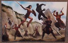 Wonder Woman vs Black Panther Glossy Art Print 11 x 17 In Hard Plastic Sleeve