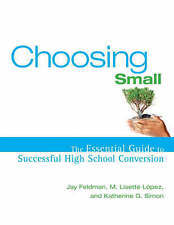 NEW Choosing Small : The Essential Guide to Successful High School Conversion