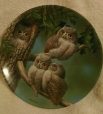 Peek-A-Whoo:Screech Owls Plate Baby Owls Of North America plate # 13199 A Mint c