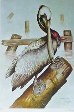 DALE HAUCK The Brown Pelican 1973 HAND SIGNED BIRD LITHOGRAPH Listed US Artist