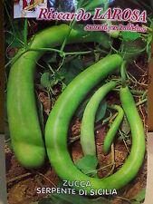 Environ 30 Pépins Citrouille Serpent Di Sicilia