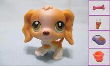 LITTLEST PET SHOP DOG COCKER SPANIEL RYAN  #79 Puppy + 1 Accessory 100%Authentic