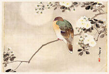 Bird Perched on a Branch of a Blossoming Tree A1 High Quality Canvas Print