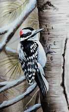 "16 ""Downy Woodpecker"" 12x17 Canvas Print by Robert Metropulos"