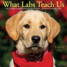 What Labs Teach Us (dog breed calendar) 2021 Wall Calendar (Free Shipping)
