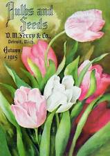 D M Fery Tulips Ad