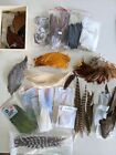 Large Lot Of Vintage Fly Tying Feathers, Pre-owned