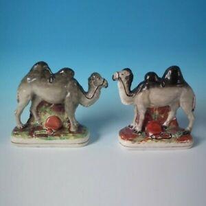 Passende Paar Staffordshire Baktrisches Kamele