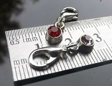Birthstone Clip on Charm for Bracelets