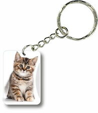Keychain key ring keyring car motorcycle housse cat funny cute kitten paw r1