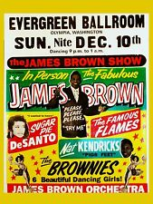 "James Brown Evergreen 16"" x 12"" Photo Repro Concert Poster"