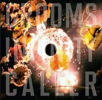 Grooms - Infinity Caller (2013)  Vinyl LP + Downlaod  NEW/SEALED  SPEEDYPOST