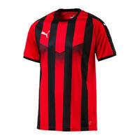 Puma LIGA Jersey Langarmtrikot Fußball Sport Trainingsshirt Team Herren 703419